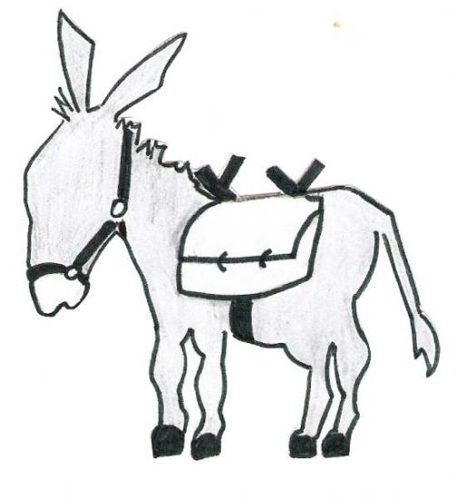 logo  petit âne